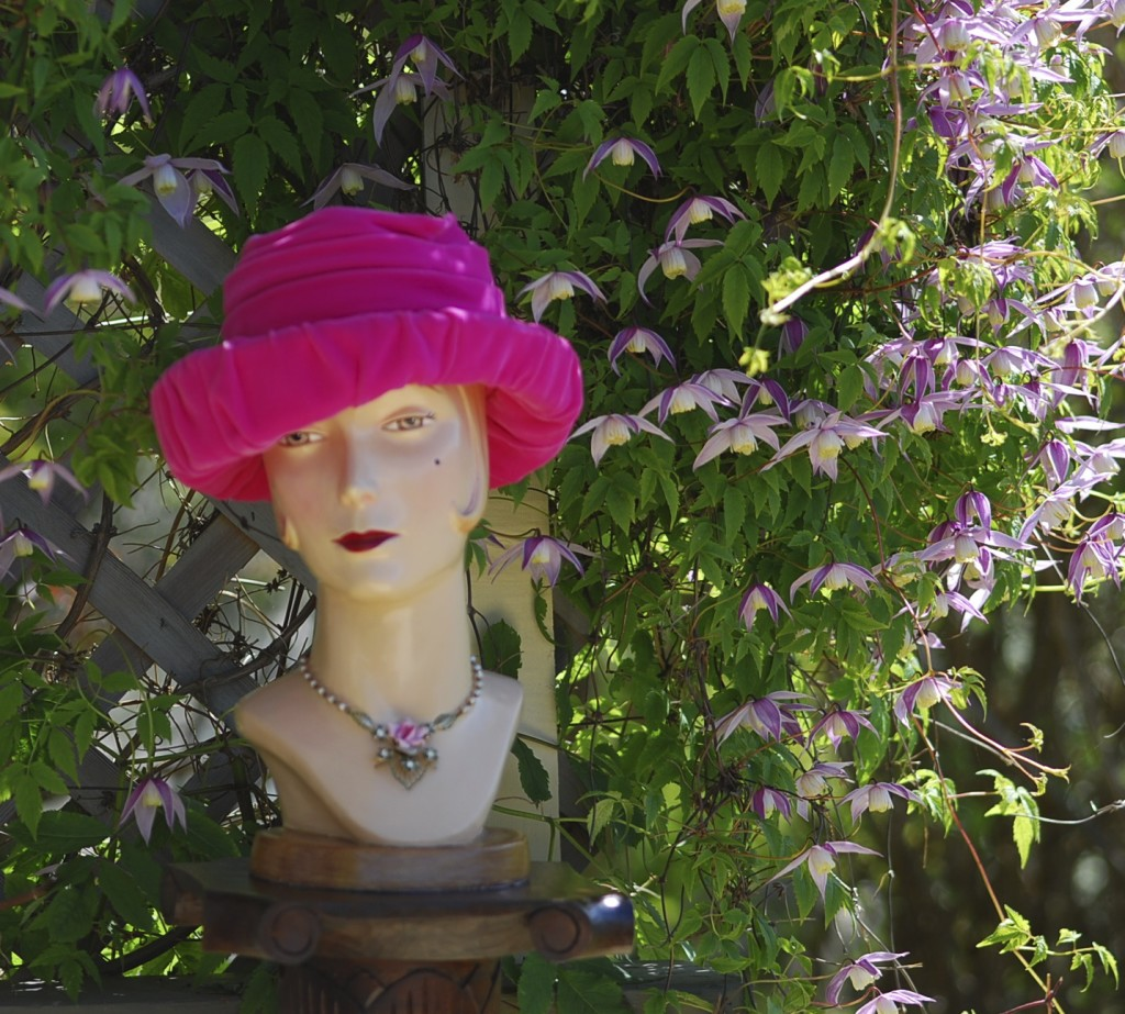 pink velvet 1950s hat with clematis back drop